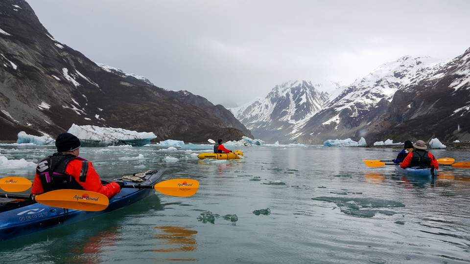 20160413_GlacierBay_Sailing_Day4-1086